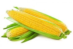 Maize prices closed higher by 0.92 per cent on Friday at the National Commodity & Derivatives Exchange Limited (NCDEX) - See more at: http://ways2capital-agritips.blogspot.in/2015/07/maize-ends-higher-as-demand-picks-up.html#sthash.NHIppz8c.dpuf