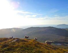 Morning hike up Heval on the Isle of Barra, Outer Hebrides