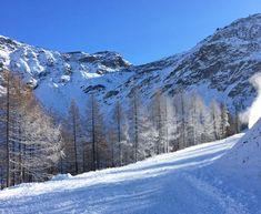 Madesimo, impianti aperti sabato 19 e domenica 20 con skipass a 25€ http://news.mondoneve.it/apertura-impianti-sciistici-madesimo-inverno-2016-2017_9018.html #montagna #neve #sci #snow #mountain #ski #alps