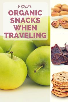 Discover 9 Healthy and Organic Snacks when traveling or on the go. asoutherntraveler.com