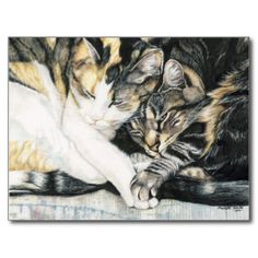 """I Wanna Hold your Paw"" Cat Art Postcard $1.10"