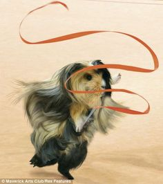 Rat-a-twirly: In April the calendar celebrates gymnastics