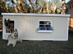 Great dog house plans from:  http://www.ashcustomwood.com/customerhouses.cfm?CurrentPage=17#