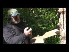Paul Stamets mushroom lecture part 1