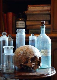 Skull at a library