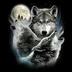 three wolves tattoo - Pesquisa Google