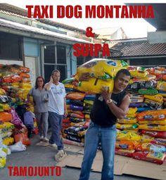TAXI DOG MONTANHA TRANSPORTE DE ANIMAIS NO RIO DE JANEIRO: TAXI DOG MONTANHA TRANSPORTE DE ANIMAIS Ajudando a...