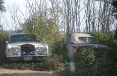 Rolls Royce sedan and convertible