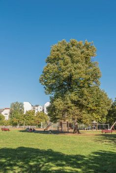 Quirlige Ecken und grüne Ruhepole wechseln sich im Berliner Stadtteil Neukölln ab. In Reiseführern und Blogs wird er als einer der reizvollsten Berlins präsentiert.