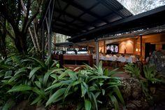 Enjoy dinner in the greens of the mountain at Cedar Creek Lodges in Thunderbird Park http://ticketsandtours.com.au/accomodation/