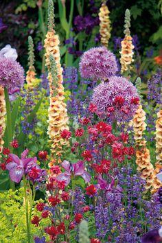 Pohoda venkovské zahrady   HOME Flora Flowers, Black Flowers, Spring Flowers, Wild Flowers, Beautiful Flowers Garden, Beautiful Gardens, Gladioli, Garden Images, Salvia