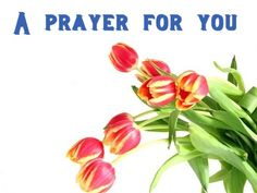 """Please Pray for a very dear friend of mine, """"P"""".  They has been told that one parent only as a few days to live.....other parent in a nursing home not doing well at all.....multiple other things that truly, you would not believe if I shared all....  PLEASE PRAY, holding them & their family up in prayer."""