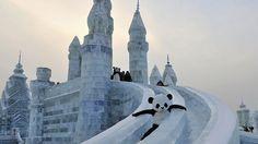 Um trabalhador fantasiado de panda desliza em escultura de gelo durante o festival de neve em Harbin, na China - Sheng Li/Reuters