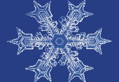 Nature's Great Piece of Art-Slash-Geometry Lesson: The Snowflake | DiscoverMagazine.com
