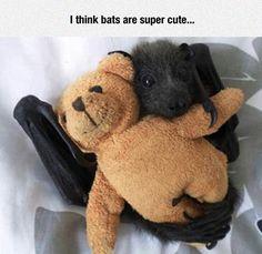 I think bats...
