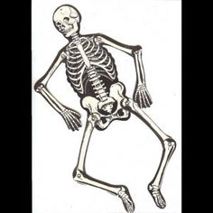 Indoor Outdoor Halloween Skeleton Decorations Ideas Intended For Measurements 1024 X Printable