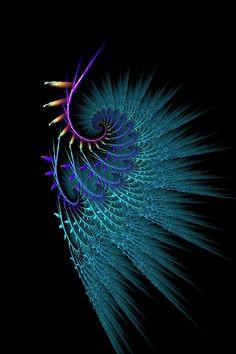 May Peacock by Kattvinge.deviantart.com on @DeviantArt