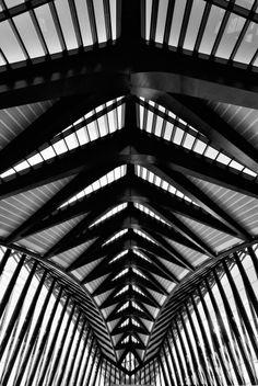 Santiago Calatrava - Lyon Airport & Train Station
