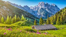Niemcy, Bawaria, Góry Alpy, Park Narodowy Berchtesgaden, Drewniany, Budynek, Drzewa