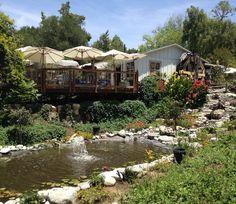 Myrtle Creek Botanical Gardens U0026 Nursery   Fallbrook, CA | Yelp | Visit:  North County SD | Pinterest