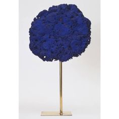 plumcollectiveYves Klein, 1957. #wrapitup #yvesklein #fench #artist #sculpture #blue #art #moma #beautiful