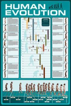 Human #Evolution Poster