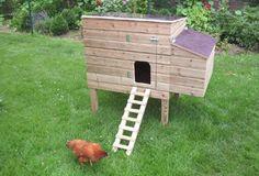 Een nieuw onderkomen voor de kippenkan je zelf maken met het schema ende werkbeschrijving op deze link.Jaarlijks organiseert Imog een Kippenactie,waar je je tegen een democratische prijs kippe…