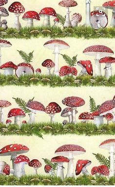 site for interesting crafty items including Mushroom crafting paper made in Germany Paper Art, Paper Crafts, Diy Crafts, Scrapbook Paper, Scrapbooking, Backgrounds Wallpapers, Gravure Illustration, Etiquette Vintage, Art Carte