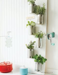 Sweet Paul's indoor herb gardens are easy and functional DIY projects! would go great on the balcony for fresh herb all the time if I can't get a stacker