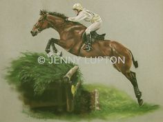 Jenny Lupton equestrian and horse potrait artist