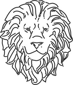 Pracht leeuw