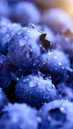 Blueberries, drops, macro, wallpaper - Best of Wallpapers for Andriod and ios Food Wallpaper, Iphone Background Wallpaper, Aesthetic Iphone Wallpaper, Phone Backgrounds, Aesthetic Wallpapers, Wallpaper Samsung, Blue Wallpapers, Pretty Wallpapers, Phone Wallpapers