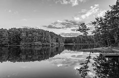 Babcock State Park Evening Bw.  Boley Lake in West Virginia's Babcock State Park offers peaceful reflections and serenity on a summer evening.