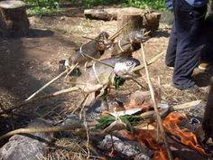 Cooking fish on a stick