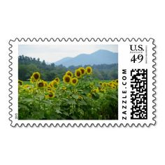 Sunflowers and Mountains Stamps Postage Stamps