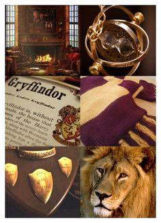 """""""Gryffindor"""" by fandoms-have-eaten-my-soul ❤ liked on Polyvore featuring art"""