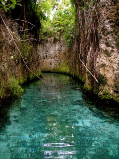 Subterranean sluice at Xcaret Park in Mexico. Kids were not amused when we went through the covered,dark parts of it,lol