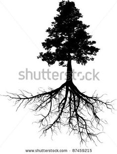 Silhouettes of tree with its roots by cla78, via ShutterStock
