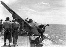 Brewster F2A Buffalo, 1943