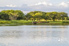 #NicklausDesign #Golf Course - #Buenaventura, #Panama