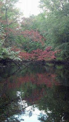 Fall upriver on the Mullica River, Sweetwater, NJ