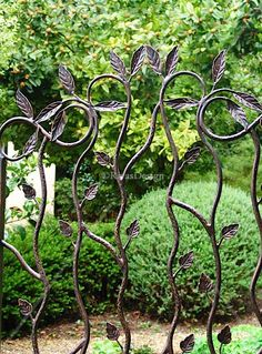 Google Image Result for http://www.rivasdesign.com.au/img/gates/leaf-design-single-wrought-iron-gate/large/small-wrought-iron-gate.jpg