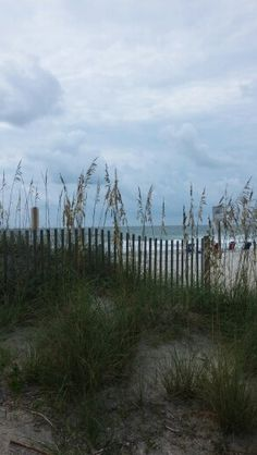 The sand dune at Garden City beach, SC.