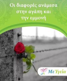 Οι διαφορές ανάμεσα στην αγάπη και την εμμονή  Είναι αγάπη ή εμμονή; Όταν η αγάπη γίνεται εμμονή, το άλλο άτομο σας γίνεται ανάγκη. Φοβάστε μη το χάσετε. Μάθετε περισσότερα σ' αυτό το άρθρο. Love, Amor
