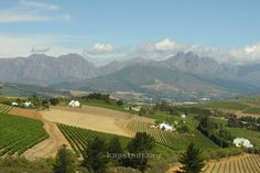 Stellenbosch is town situated 50 km from the city of Cape Town in the Western Cape in South Africa. Cape Town, Weekend Getaways, Farms, Countryside, South Africa, Followers, Tourism, Beautiful Places, Villa