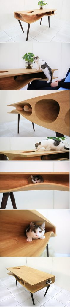 CATable丨猫桌 by LYCS Architecture