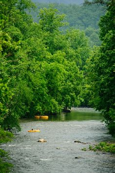 Make your tubing reservations online for Smoky Mountain River Rat - whether you're a single person or representing a large group. Mountain Vacations, Family Vacation Destinations, Vacation Spots, Vacation Ideas, Townsend Tennessee, East Tennessee, Tennessee Attractions, Tennessee Vacation, Great Smoky Mountains