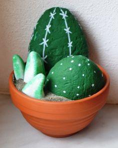 kamenný kaktus - stony kaktus