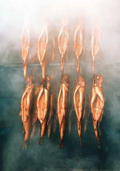 salting Plus pickling sausaging /& care Smoking salmon /& trout