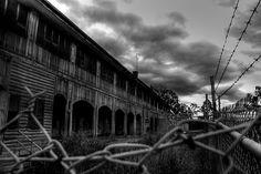 Wolston park mental hospital
